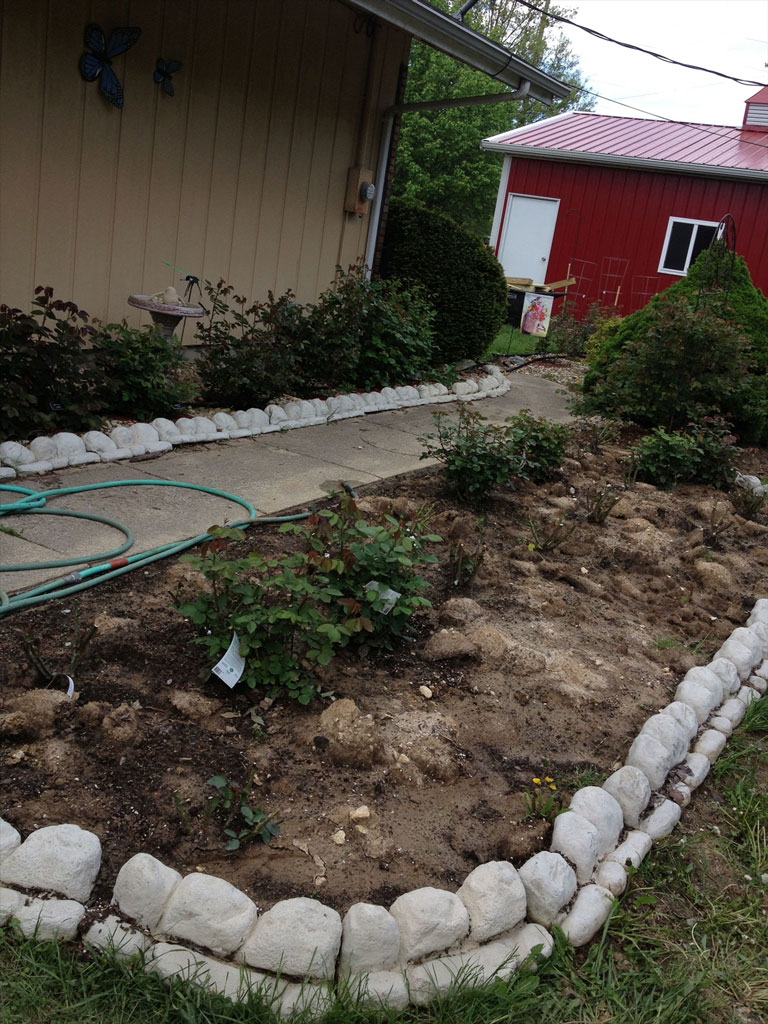 Rose Garden Expansion Project Phase Four