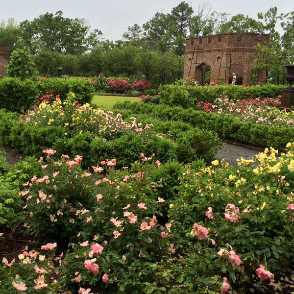 P. Allen Smith's Rose Garden at Moss Mountain Farm