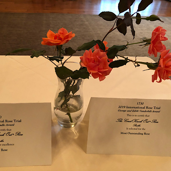 """George & Edith Vanderbilt Award 'Most Outstanding Rose' """"The Coral Knock®Out Rose bred by Will Radler"""